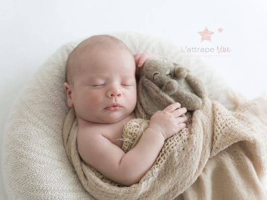 bebe lapin